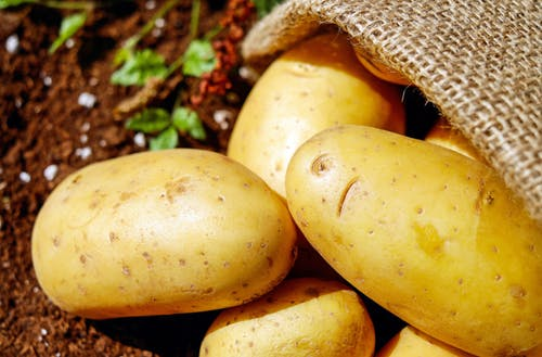 Are potatoes a vegetable or fruit?