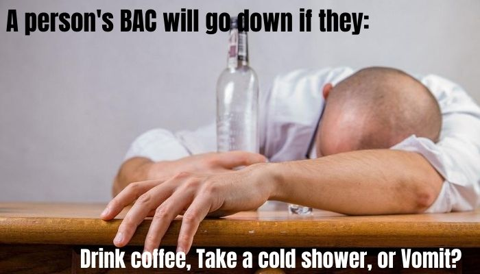 A person's bac will go down if they: