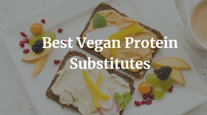Best Vegan Protein Substitutes